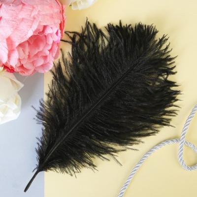 Перо-щекоталка черное 24 см